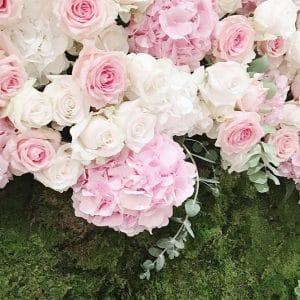 Zid mahovina s cvijećem